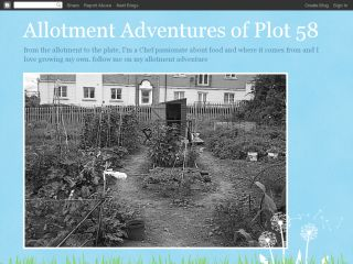 Allotment Adventures of plot 58