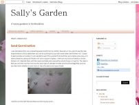 Sally's Garden  - A novice gardener in St Albans