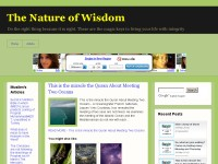 The Nature of Wisdom