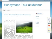 Honeymoon Tour at Munnar